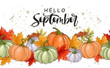 "Pumpkins, Leaves, Acorns With Handwritten Inscription ""Hello September"". Vector Illustrations For Posters, Postcards, Invitations And More."