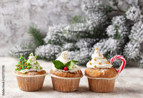 Christmas festive cupcake with different decorations Canvas Print