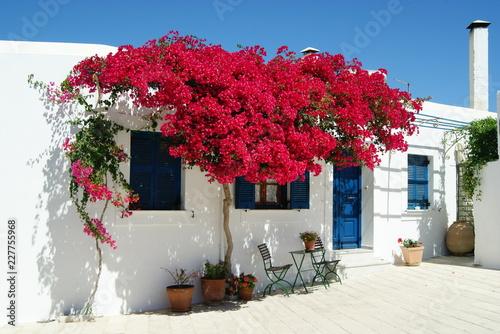 Photo Paros, Les Cyclades