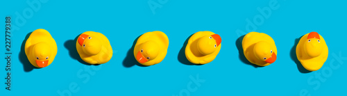 Fotografia Collection of yellow rubber ducks on a blue background