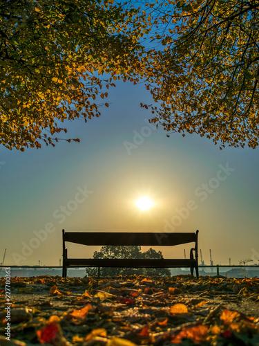 Fototapety, obrazy: bench autumn