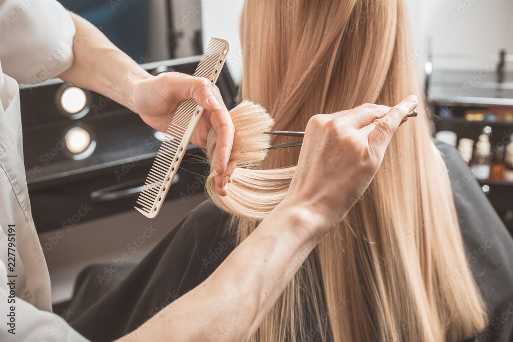 Fototapeta Hairdresser is cutting long hair in hair salon