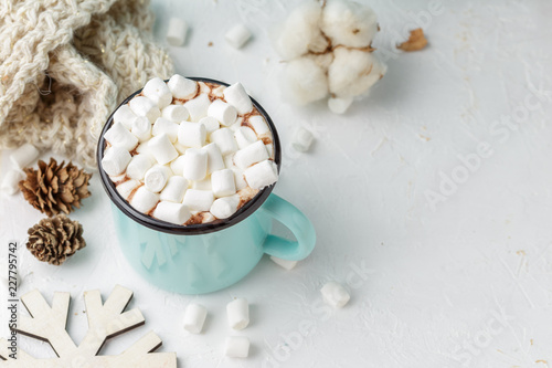 Foto auf Gartenposter Schokolade Mug of cocoa with marshmallows and winter decor