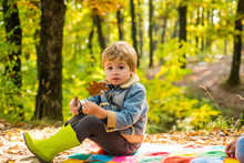 Child Love. Hello Autumn Bye Summer. Cute Boy With Autumn Leaves On Fall Nature Background. Childhood Concept.