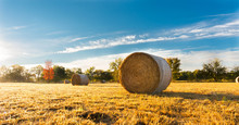 Hay Bale In A Farm Field