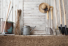 Gardening Tools On Wooden Whit...