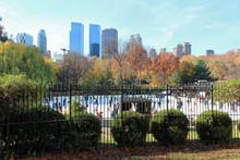 New York, USA - November 21, 2...