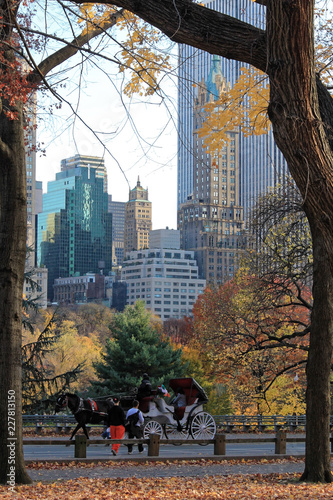 New York, USA - November 21, 2010: Central Park Autumn and buildings in midtown Canvas Print