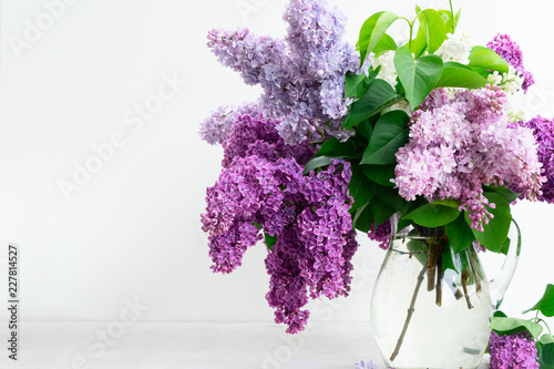 Fotobehang Lilac Fresh lilac flowers in vase over white background close up