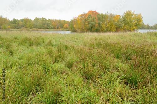 Obraz na plátně Autumn landscape in the Park.