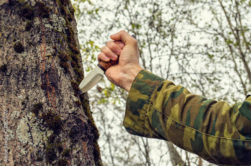 man holding the handle of a knife stuck in a tree