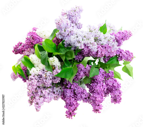 Autocollant pour porte Lilac Fresh lilac flowers bouquet isolated over white background