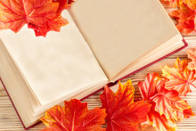 Open Book With Old Blank Pages As Copy Space And Autumn Fallen Leaves. Vintage Still Life With Red Maple Leaves And Note Book On White Planks.