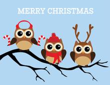 Vector Christmas Owls