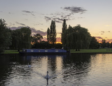 River Boat Moored On St Neots Riverside With Colourful Sunset In Background And Swimming Swan In Forground