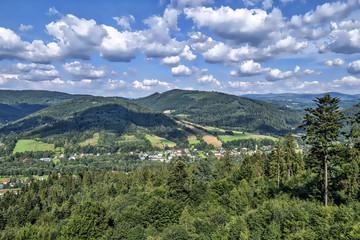 Widok na Beskid Śląski z Drogi na Czantorię w Beskidach