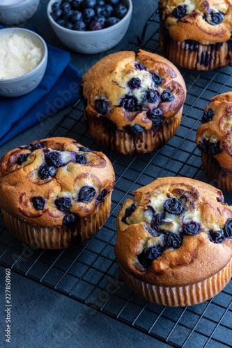 Fotografía Blueberry Muffins