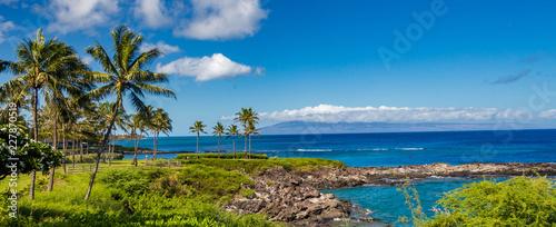 Fotografie, Tablou Maui