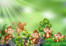 Nature Scene With Group Of Monkey Cartoon