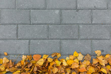 Autumn Leaves On Paving Stone Bricks Background Top View