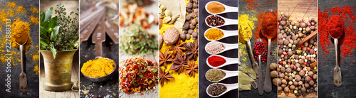 In de dag Aromatische collage of various herbs and spices