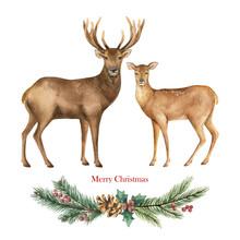 Christmas Vector Reindeer With...
