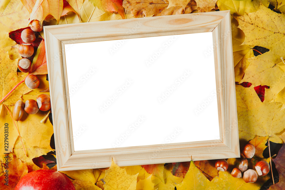 Fototapety, obrazy: Blank wooden photo frame with hazelnuts on colorful maple leaves background. Autumn concept.