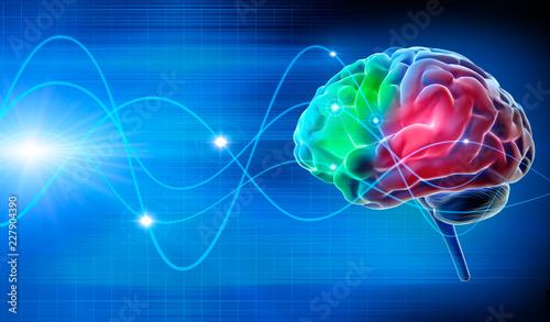 Fotografie, Tablou  Gehirn - Schwingungen 2