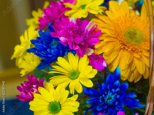 Fototapety, obrazy: beautiful bouquet of colorful flowers