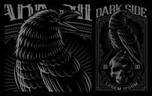 Black Raven On The Skull.