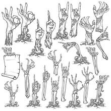 Zombie Body Language. Set Of L...