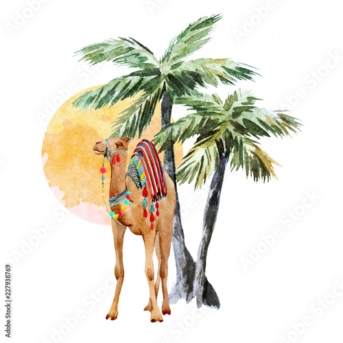 Photo Watercolor camel and palm composition
