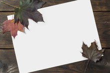 Autumn Leaves And Paper On The Wood