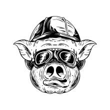 Pig Biker. Black And White Illustration. Isolated On Light Backgrond.