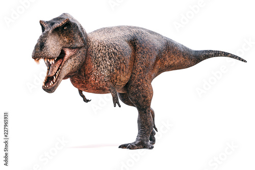 Cuadros en Lienzo 3d Tyrannosaurus rex render on white background