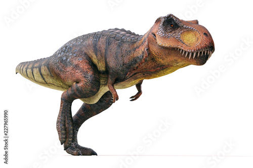 3d Tyrannosaurus rex render on white background Wallpaper Mural