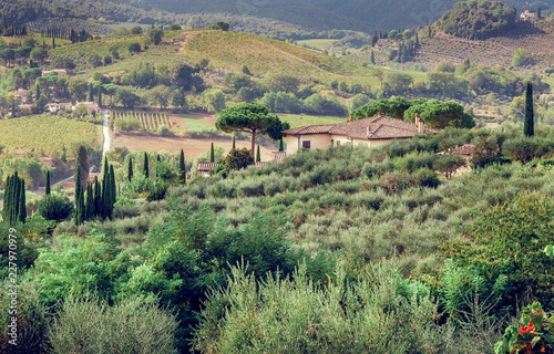 Landscape of Tuscany with garden trees, villa, green hills and pines. Italian countryside