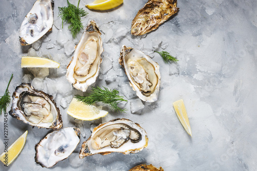Foto op Aluminium Schaaldieren Opened Oysters with lemon on gray concrete texture background