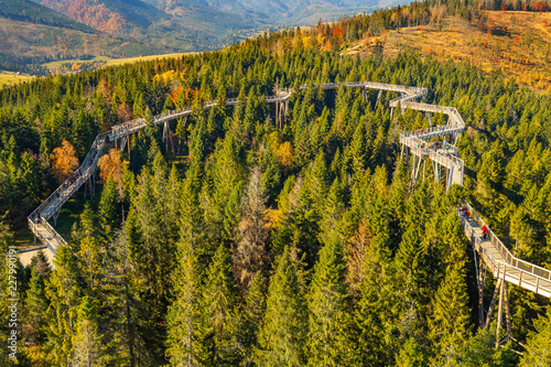 Fotografering The treetop walk Bachledka in High Tatra mountains, Bachledova Valley in Slovaki