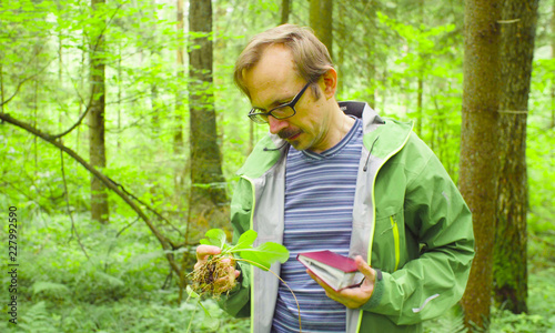 A scientist environmentalist exploring plants in a forest Billede på lærred