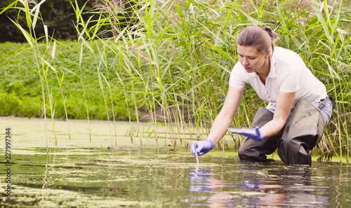 Fotografie, Obraz Woman ecologist getting sampels of the plants in the lake