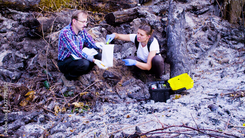 Two scientists ecologists working at the place where the forest burned down Canvas-taulu
