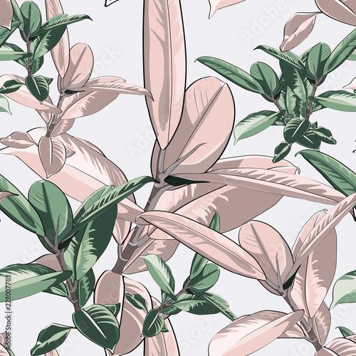 wzor-zielony-i-rozowy-ficus-elastica-pozostawia-na-jasnym-tle