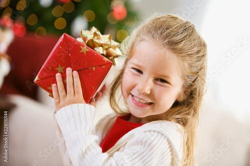 Fotografie, Obraz  Christmas: Cute Girl with Christmas Gift