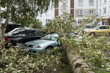 A Strong Wind Broke A Tree That Fell On A Car Parked Nearby