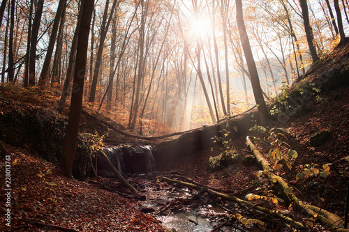 Foto op Canvas Herfst Small waterfall in the deep forest at autumn