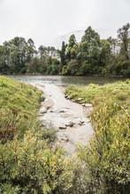 Bach Mündet In Einen Fluss