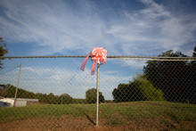 Pink Bow On Fence