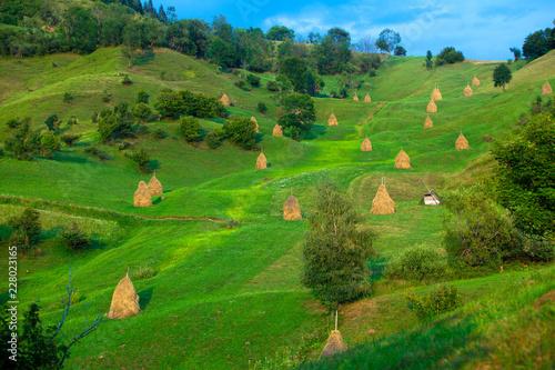 Foto op Canvas Groene Haystack rural landscape in Romania