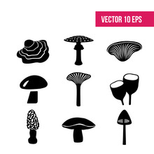 Mushrooms On A White Background.   Fungus. Vector - Stock Vector, Icon Pack